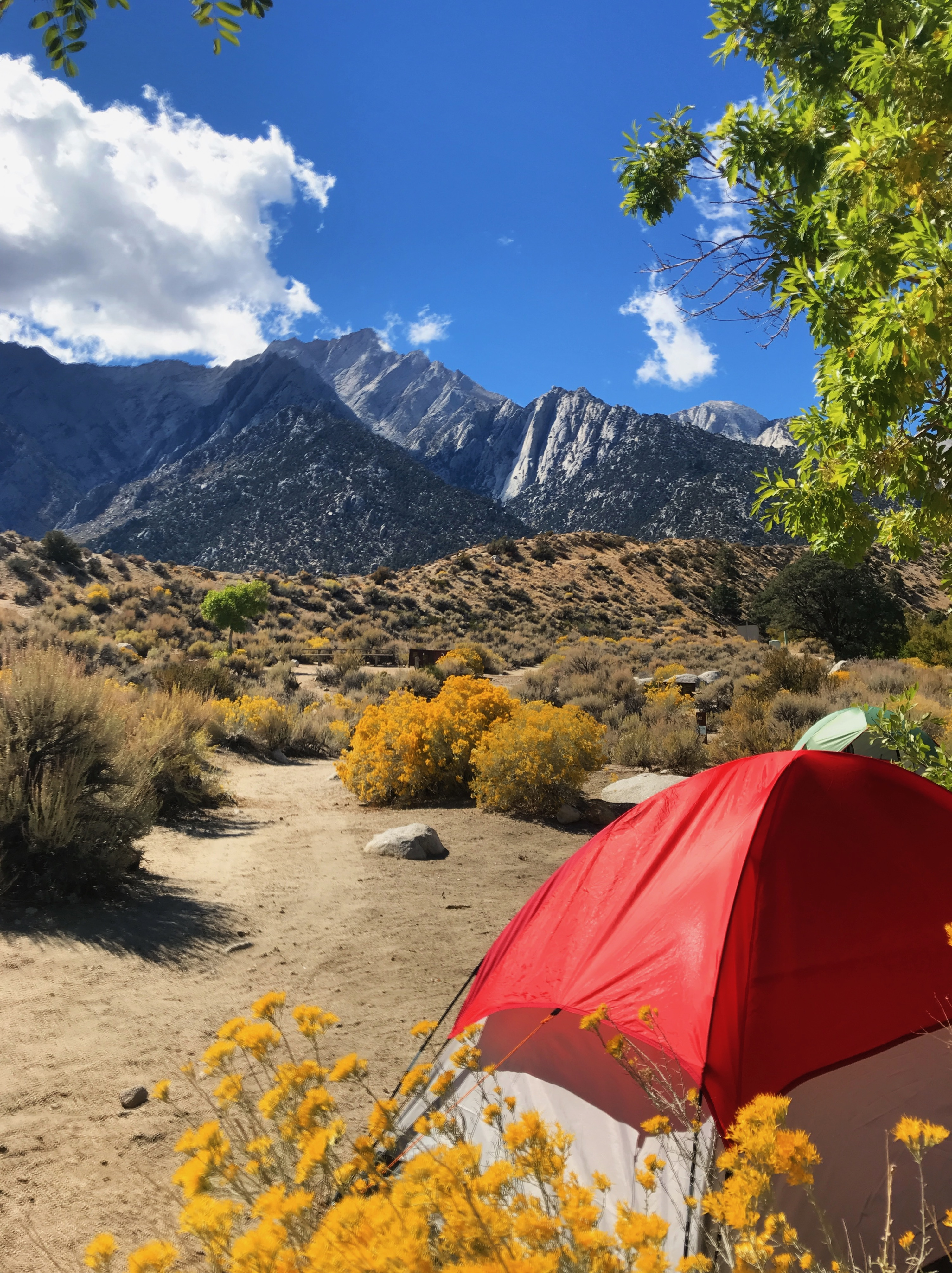 Camping in Lone Pine